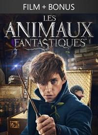 Les Animaux Fantastiques + Bonus