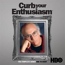 Curb Your Enthusiasm Seasons 1-8