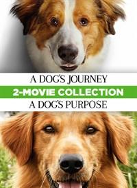 A Dog's Journey & A Dog's Purpose