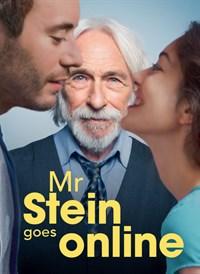Mr Stein Goes Online