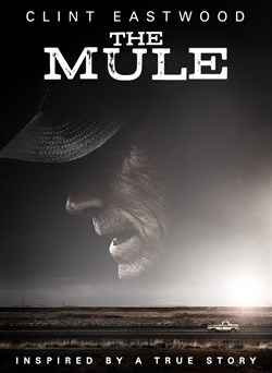 Buy The Mule from Microsoft.com