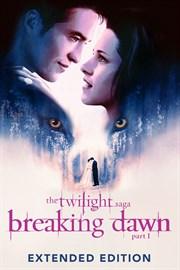 Twilight breaking dawn part 1 book online