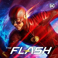The Flash (2014) (Subtitled)