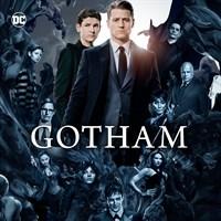 Gotham: Season 1-4
