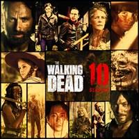 The Walking Dead - Seasons 1-10