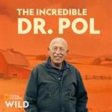 Buy The Incredible Dr  Pol, Season 14 - Microsoft Store