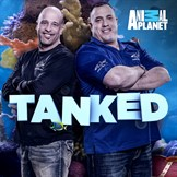 tanked season 15 episode 9