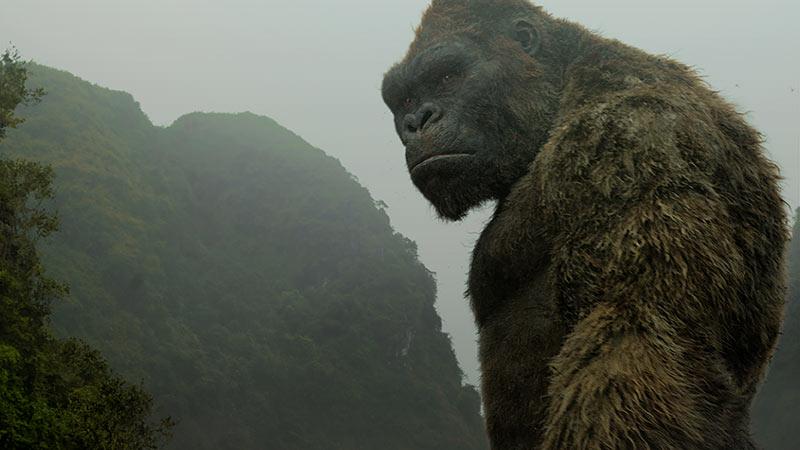 Rent Kong: Skull Island